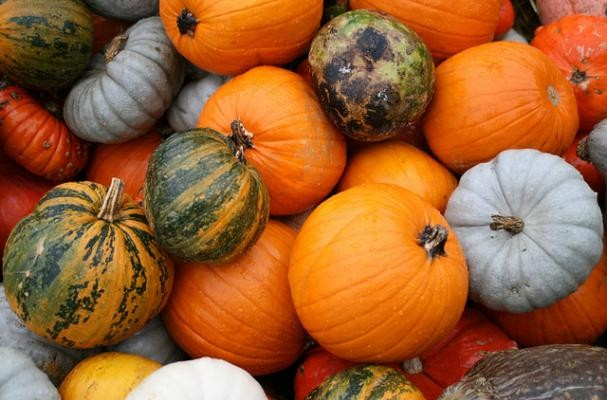 Don't Miss these Healthy Fall Foods